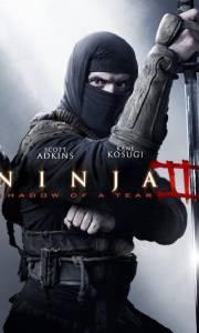 Ninja: cień łzy online / Ninja: shadow of a tear online (2013) | Kinomaniak.pl