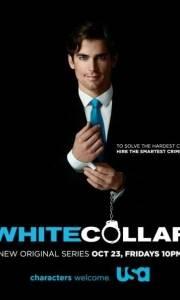 White collar online (2009-)   Kinomaniak.pl