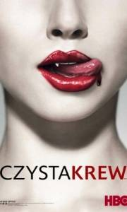 Czysta krew online / True blood online (2008-) | Kinomaniak.pl