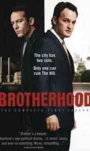 Braterstwo online / Brotherhood online (2006-) | Kinomaniak.pl
