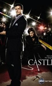 Castle online (2009-)   Kinomaniak.pl