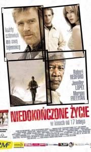 Niedokończone życie online / Unfinished life, an online (2005)   Kinomaniak.pl