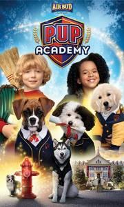 Psia akademia online / Pup academy online (2019-) | Kinomaniak.pl