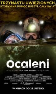 Ocaleni online / The cave online (2019) | Kinomaniak.pl
