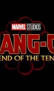 Shang-chi i legenda dziesięciu pierścieni online / Shang-chi and the legend of the ten rings online (2021) | Kinomaniak.pl