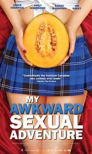 Seks dla opornych online / My awkward sexual adventure online (2012) | Kinomaniak.pl